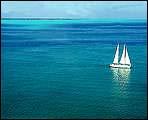 Caribbean Seaa